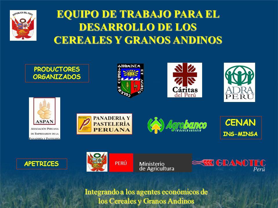 EQUIPO DE TRABAJO PARA EL DESARROLLO DE LOS CEREALES Y GRANOS ANDINOS CENAN INS-MINSA PRODUCTORES ORGANIZADOS Integrando a los agentes económicos de l