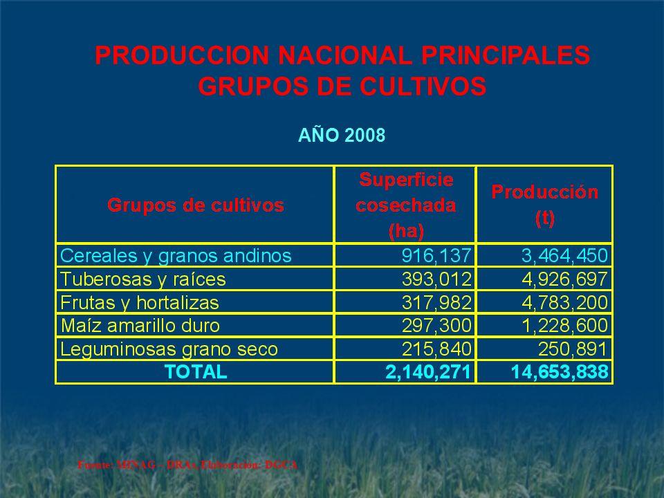PRODUCCION NACIONAL PRINCIPALES GRUPOS DE CULTIVOS AÑO 2008 Fuente: MINAG – DRAs, Elaboración: DGCA