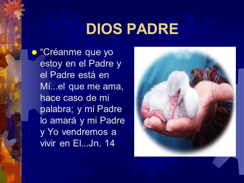 DIOS PADRE, HIJO, ESPIRITU SANTO El Dios que nos da a conocer Jesús no es un Dios solitario, es unión de tres personas distintas que se aman DIOS PADR
