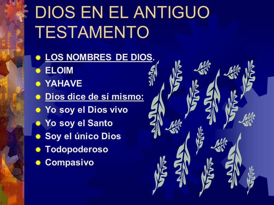 DIOS EN EL ANTIGUO TESTAMENTO LOS NOMBRES DE DIOS.