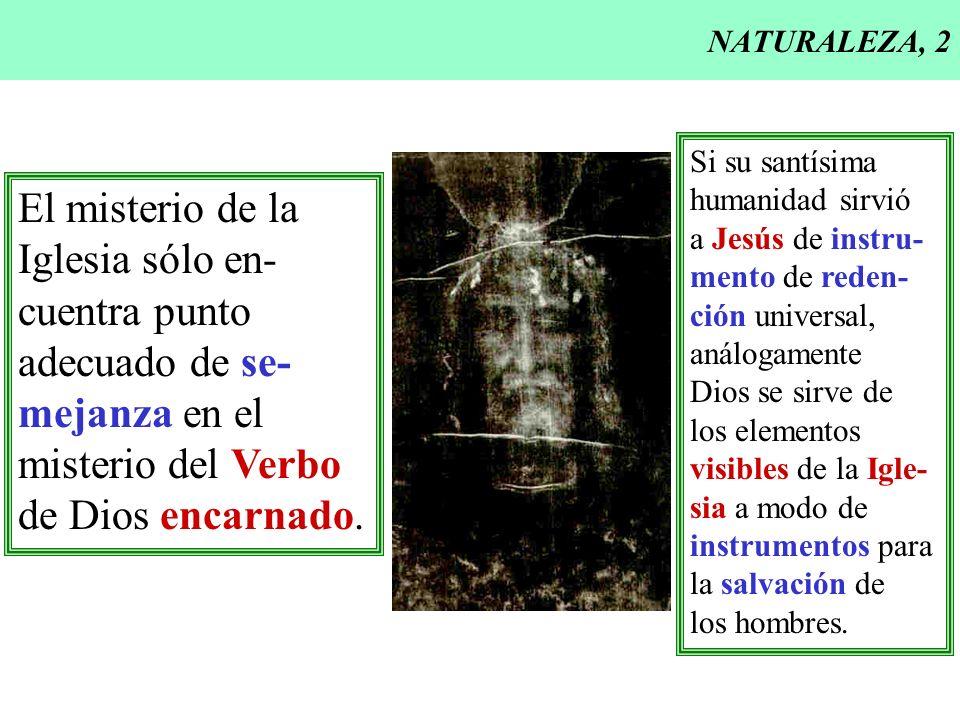 NATURALEZA, 2 El misterio de la Iglesia sólo en- cuentra punto adecuado de se- mejanza en el misterio del Verbo de Dios encarnado. Si su santísima hum