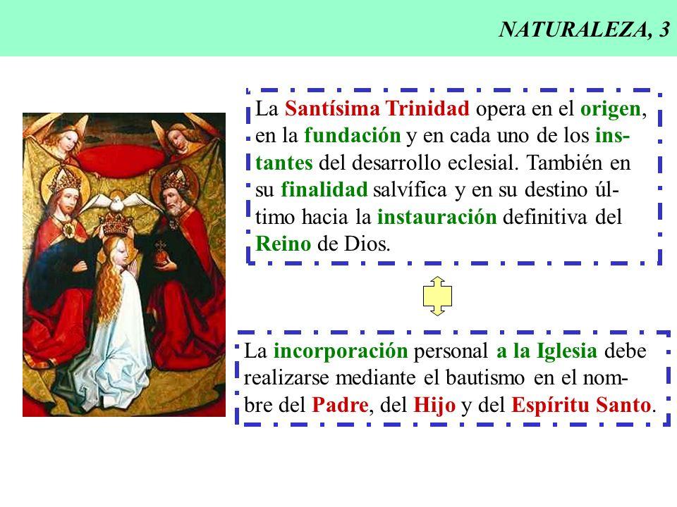 NATURALEZA, 3 La Santísima Trinidad opera en el origen, en la fundación y en cada uno de los ins- tantes del desarrollo eclesial. También en su finali