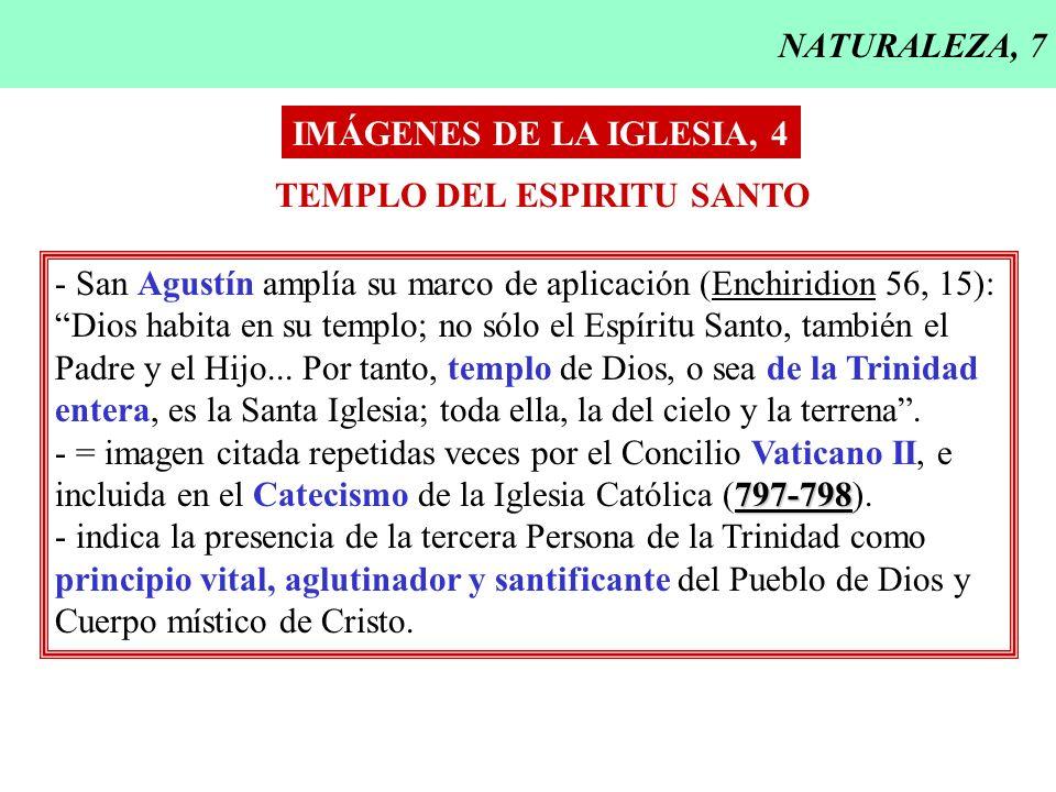 NATURALEZA, 7 IMÁGENES DE LA IGLESIA, 4 TEMPLO DEL ESPIRITU SANTO - San Agustín amplía su marco de aplicación (Enchiridion 56, 15): Dios habita en su