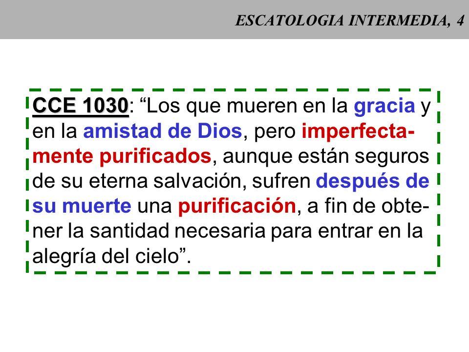 ESCATOLOGIA INTERMEDIA, 3 Magisterio Benedictus Definición solemne en la Bula Benedictus Deus (1336) Deus (1336) de Benedicto XII. La liturgia da un a