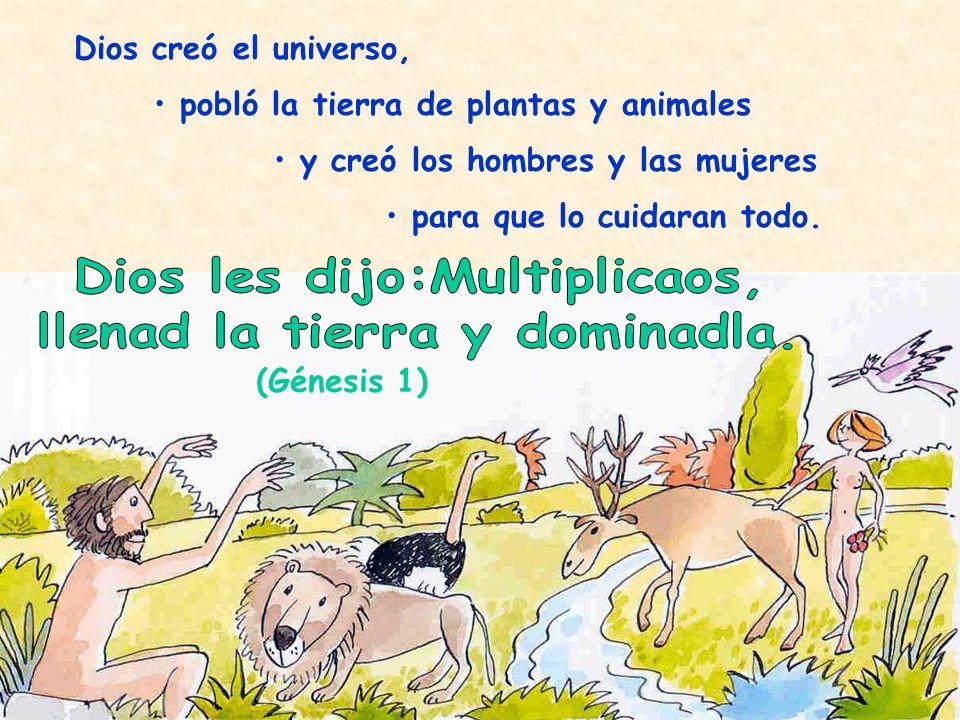 Dios creó el universo, pobló la tierra de plantas y animales y creó los hombres y las mujeres para que lo cuidaran todo. (Génesis 1)
