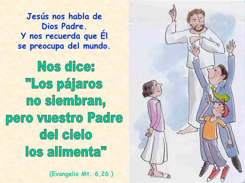 Jesús nos habla de Dios Padre. Y nos recuerda que Él se preocupa del mundo. (Evangelio Mt. 6,26 )