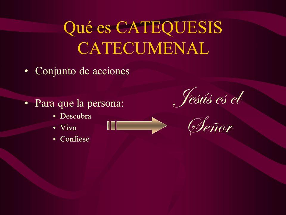 Qué es CATEQUESIS CATECUMENAL Conjunto de acciones Para que la persona: Descubra Viva Confiese Jesús es el Señor
