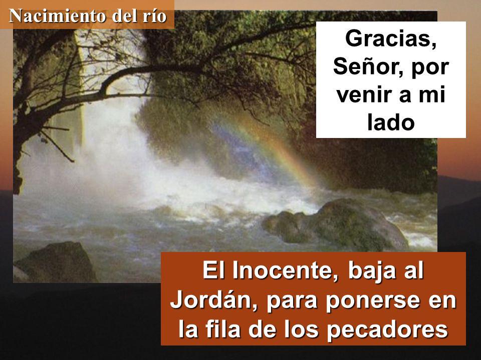 Nacimiento del río El Inocente, baja al Jordán, para ponerse en la fila de los pecadores Gracias, Señor, por venir a mi lado