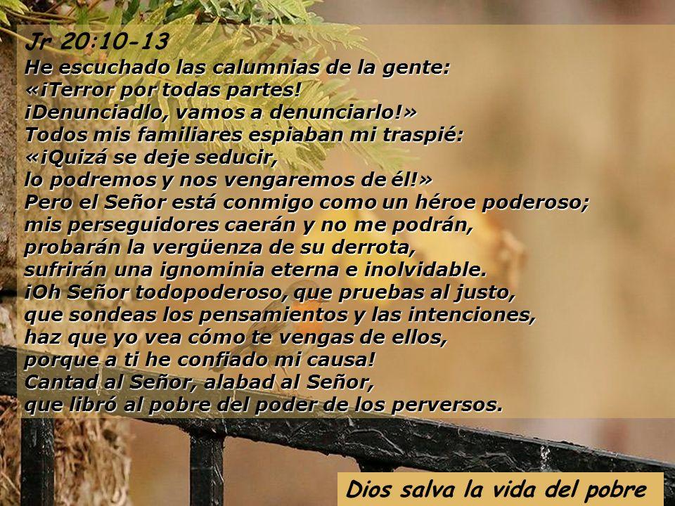 Ciclo A XII domingo Tiempo Ordinario 22 de junio de 2008 El camí (7) del Llibre Vermell de Montserrat- sXIV