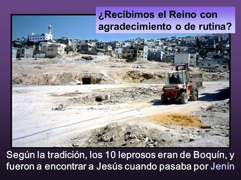 Todas las fotografías son de JENÍN. Ciudad entre Galilea y Samaria, entre judíos y árabes, donde hubo recientemente el genocidio.