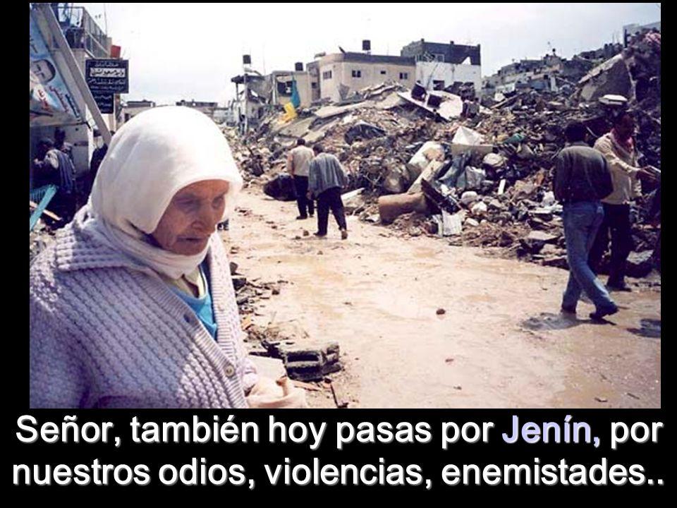 Señor, también hoy pasas por Jenín, por nuestros odios, violencias, enemistades..
