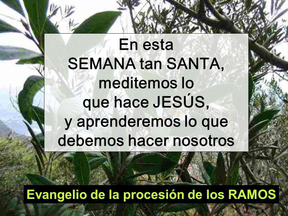 Escuchando Vas a la Cruz de la Pasión de Bach, roguemos con Jesús De RAMOS cA Monjas de Sant Benet de Montserrat