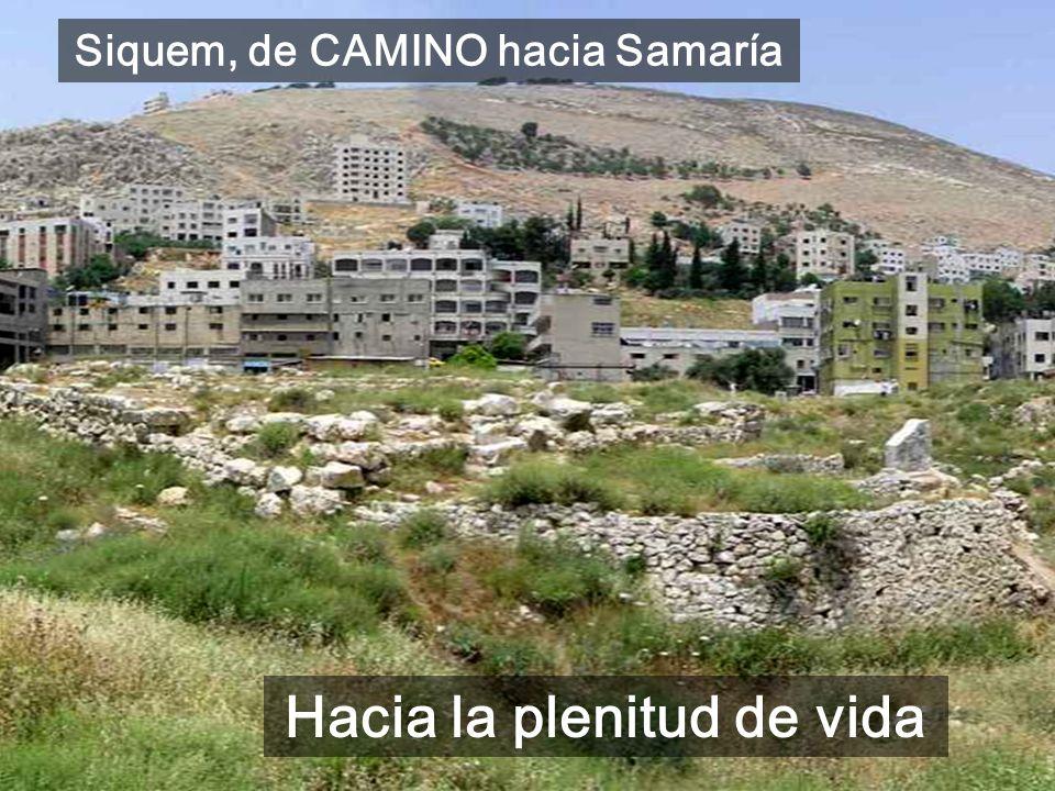 La 1a PARTE (Lc4-8) es la obra de Jesús en Galilea, ahora (Lc9-18) empieza el CAMINO hacia JERUSALÉN: CAMINO de CONVERSIÓN Lc 9,51 a 13,21 Hoy es el i