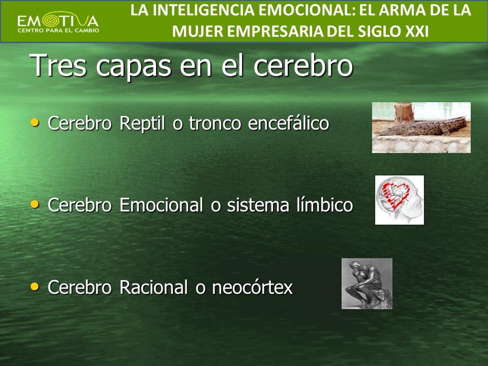 Tres capas en el cerebro Cerebro Reptil o tronco encefálico Cerebro Reptil o tronco encefálico Cerebro Emocional o sistema límbico Cerebro Emocional o