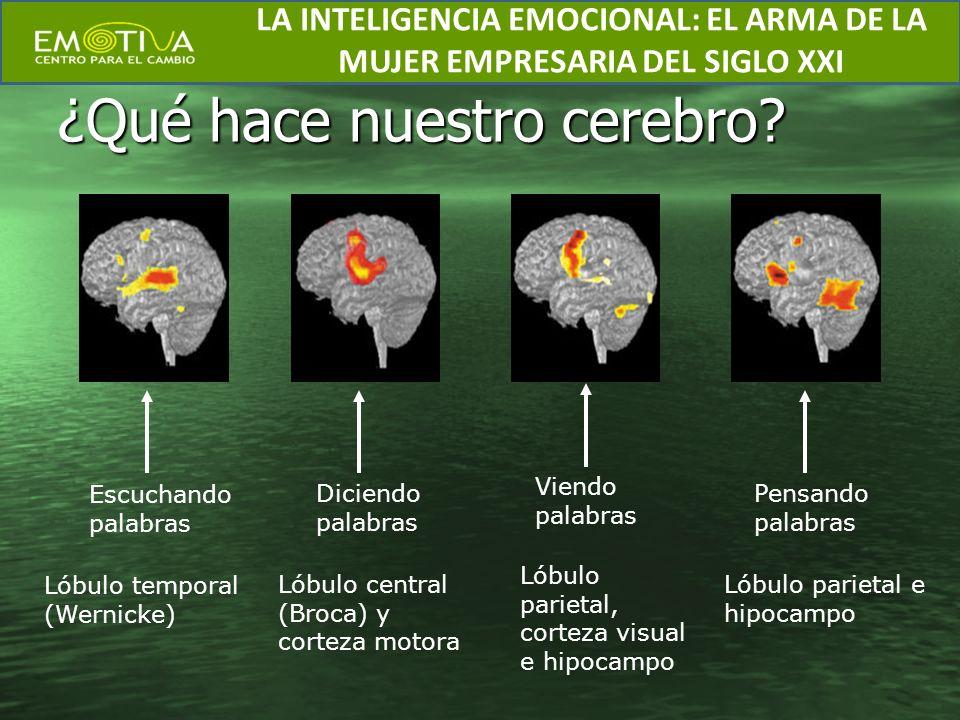 ¿Qué hace nuestro cerebro? Escuchando palabras Lóbulo temporal (Wernicke) Diciendo palabras Lóbulo central (Broca) y corteza motora Viendo palabras Ló