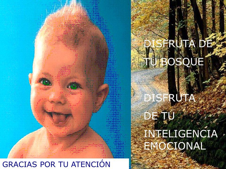DISFRUTA DE TU BOSQUE DISFRUTA DE TU INTELIGENCIA EMOCIONAL GRACIAS POR TU ATENCIÓN
