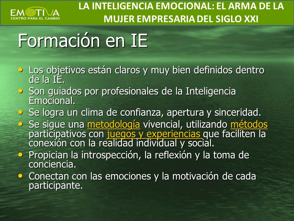 Formación en IE Los objetivos están claros y muy bien definidos dentro de la IE. Los objetivos están claros y muy bien definidos dentro de la IE. Son