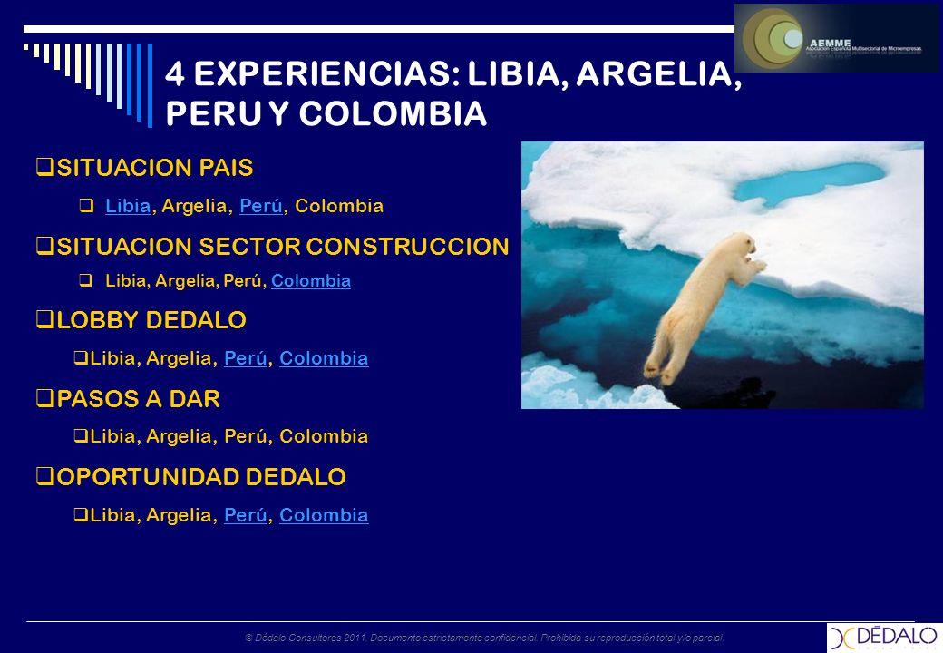 © Dédalo Consultores 2011. Documento estrictamente confidencial. Prohibida su reproducción total y/o parcial. 4 EXPERIENCIAS: LIBIA, ARGELIA, PERU Y C