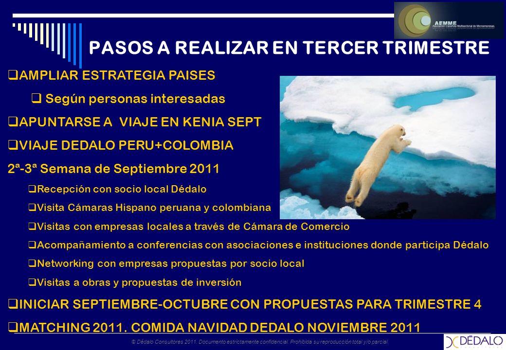 © Dédalo Consultores 2011. Documento estrictamente confidencial.