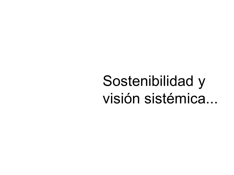 Sostenibilidad y visión sistémica...