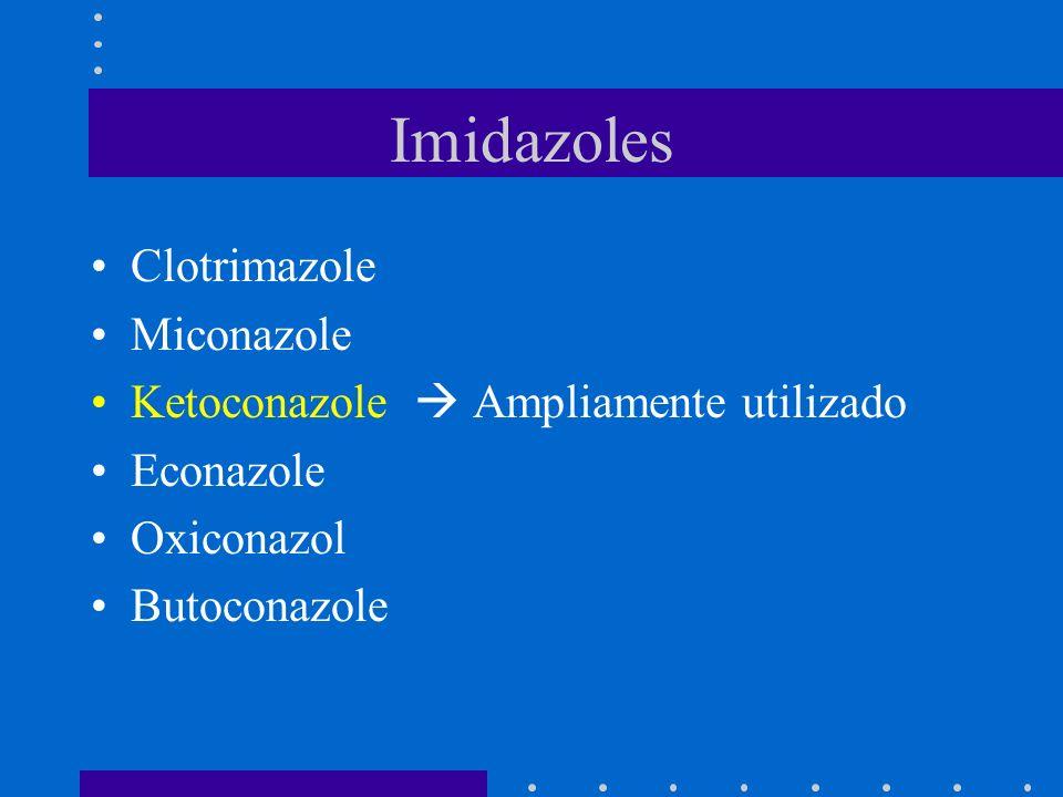 Imidazoles Clotrimazole Miconazole Ketoconazole Ampliamente utilizado Econazole Oxiconazol Butoconazole
