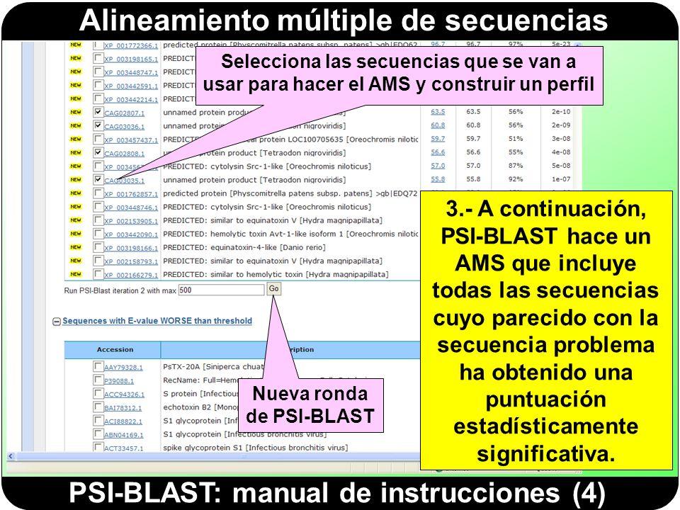 Alineamiento múltiple de secuencias PSI-BLAST: manual de instrucciones (5) 4.- Este AMS se utiliza para construir un perfil, que se utilizará para volver a buscar en la BD otras secuencias que se ajusten a él.