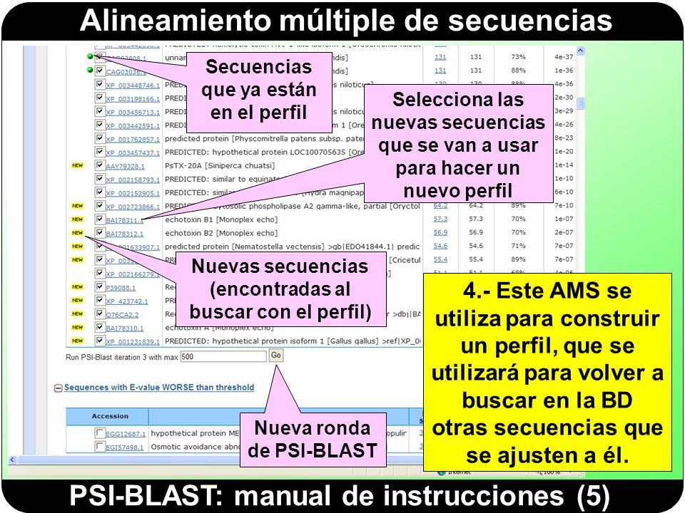 Alineamiento múltiple de secuencias PSI-BLAST: manual de instrucciones (6) 5.- PSI-BLAST selecciona las nuevas secuencias que se ajustan al perfil (porque han obtenido una puntuación significativa) y las añade a las anteriores.