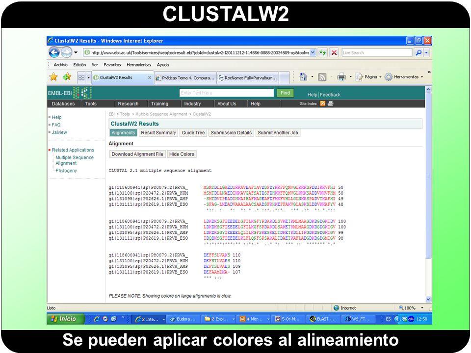 CLUSTALW2 Se pueden aplicar colores al alineamiento