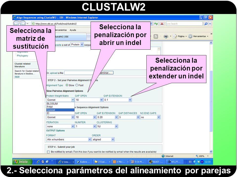 CLUSTALW2 2.- Selecciona parámetros del alineamiento por parejas Selecciona la matriz de sustitución Selecciona la penalización por abrir un indel Sel
