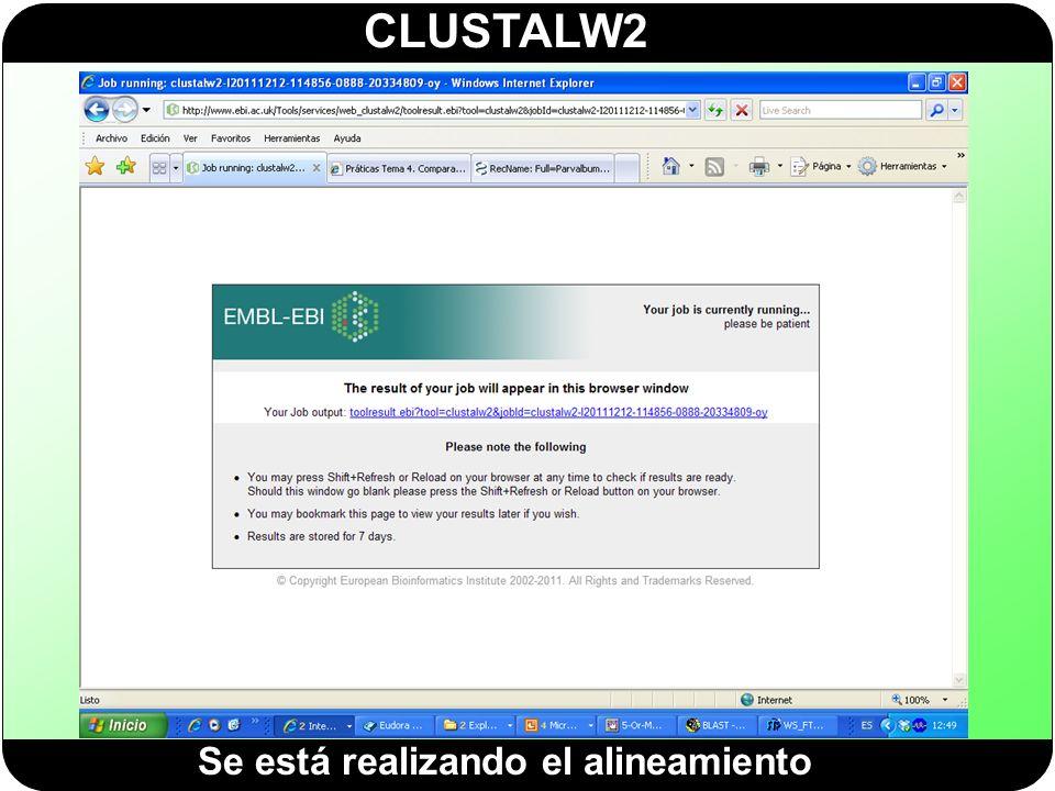 CLUSTALW2 Se está realizando el alineamiento