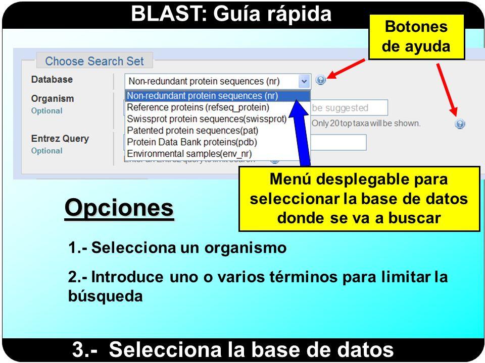 BLAST: Guía rápida 3.- Selecciona la base de datos Opciones 1.- Selecciona un organismo 2.- Introduce uno o varios términos para limitar la búsqueda B