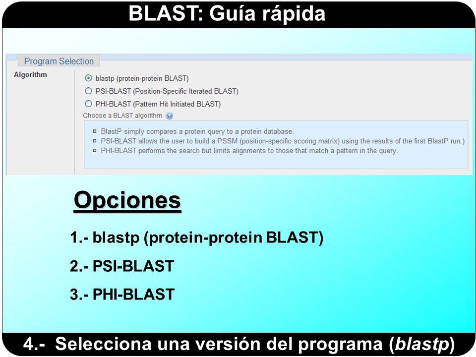 BLAST: Guía rápida 4.- Selecciona una versión del programa (blastp) 1.- blastp (protein-protein BLAST) 2.- PSI-BLAST 3.- PHI-BLAST Opciones