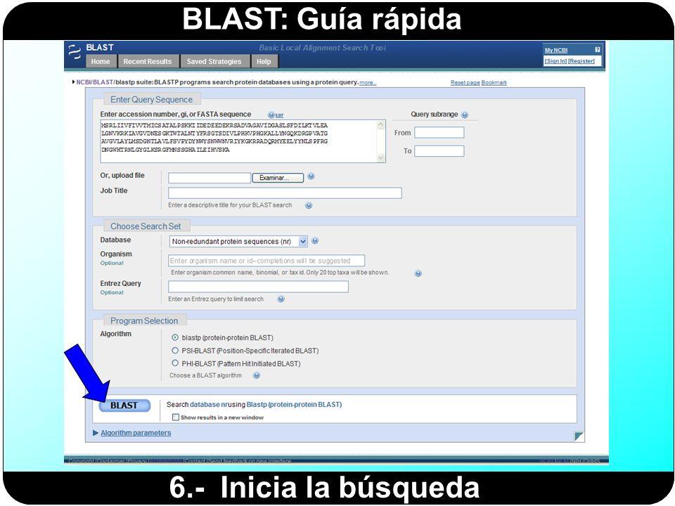 BLAST: Guía rápida 6.- Inicia la búsqueda