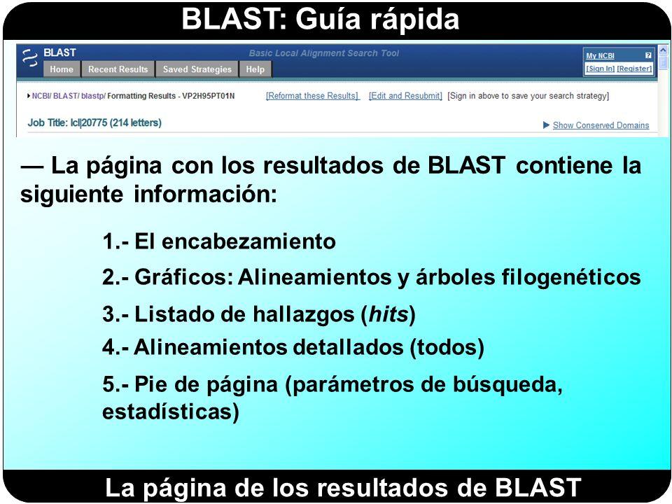 BLAST: Guía rápida La página con los resultados de BLAST contiene la siguiente información: La página de los resultados de BLAST 1.- El encabezamiento