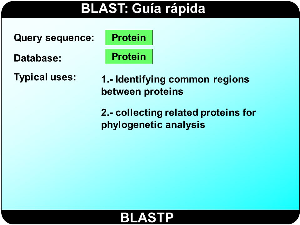 BLAST: Guía rápida BLASTX Query sequence: Database: Typical uses: Nucleotide translated into protein ( 6) 1.- Finding protein-coding genes in genomic DNA 2.- Determining if a cDNA corresponds to a known protein Protein