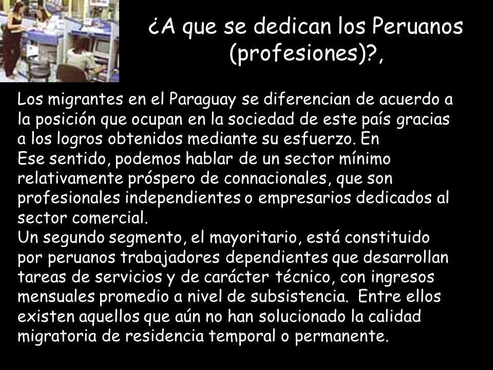 ¿A que se dedican los Peruanos (profesiones)?, Los migrantes en el Paraguay se diferencian de acuerdo a la posición que ocupan en la sociedad de este país gracias a los logros obtenidos mediante su esfuerzo.