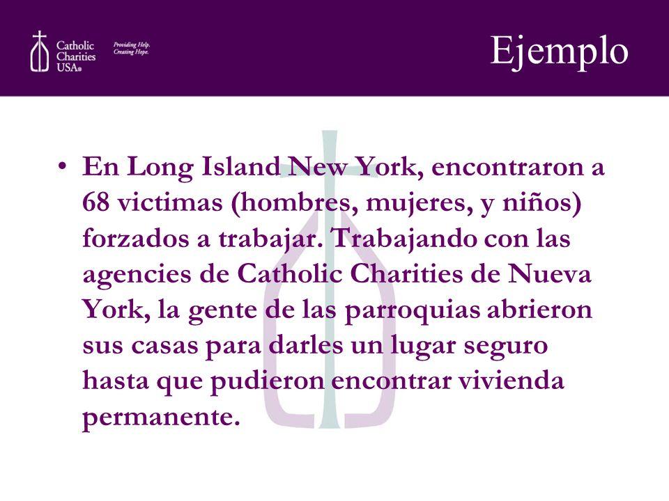Ejemplo En Long Island New York, encontraron a 68 victimas (hombres, mujeres, y niños) forzados a trabajar. Trabajando con las agencies de Catholic Ch