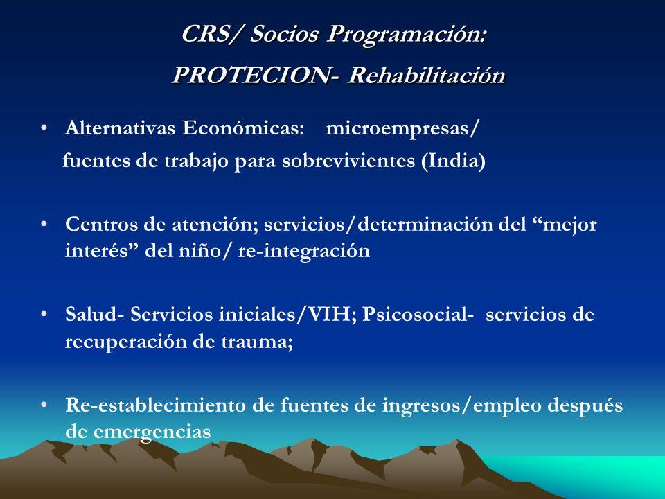 CRS/ Socios Programación: PROTECION- Rehabilitación Alternativas Económicas: microempresas/ fuentes de trabajo para sobrevivientes (India) Centros de