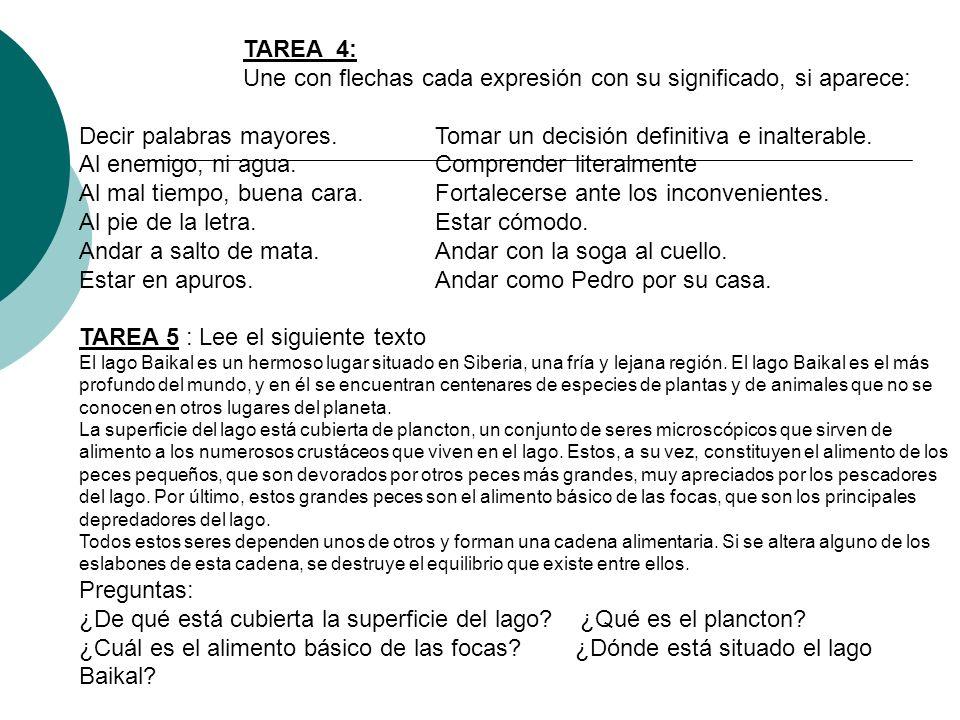 TAREA 4: Une con flechas cada expresión con su significado, si aparece: Decir palabras mayores. Tomar un decisión definitiva e inalterable. Al enemigo