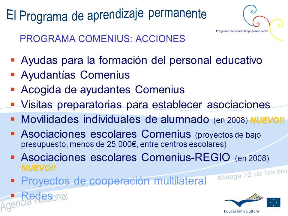 NOVEDADES (II) Asociaciones Multilaterales o bilaterales (solo Comenius) Enfoque multidisciplinar, de gestión o lingüístico Duración 2 años Movilidad Ayudas para la formación continua 3 plazos: marzo, mayo y octubre Duración máxima 6 semanas Ayudas para la formación inicial (Ayudantías) Futuro profesorado de cualquier materia Un solo formulario para cada centro de acogida Visitas de estudio Dos plazos (30 de marzo para actividades hasta 28/02/08)