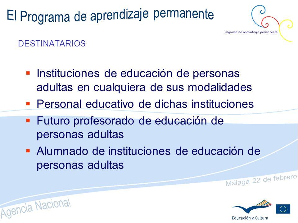 PROGRAMA GRUNDTVIG: ACCIONES NUEVO!. Movilidad de estudiantes adultos (en 2008) NUEVO!.