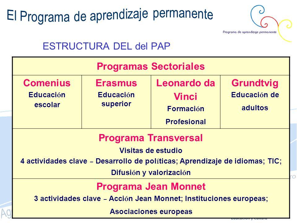 Programas P.A.P Sócrates-Leonardo (2007-13) (2000-06) LINGUA : aprendizaje de idiomas MINERVA : EAD y TIC en educación Observación e Innovación : Naric, Eurydice, ARION Acciones conjuntas Medidas de acompañamiento COMENIUS: educación escolar ERASMUS: educación superior GRUNDTVIG: otros itinerarios educativos LEONARDO DA VINCI: formación profesional COMENIUS ERASMUS GRUNDTVIG LEONARDO PROGRAMA TRANSVERSAL JEAN MONNET