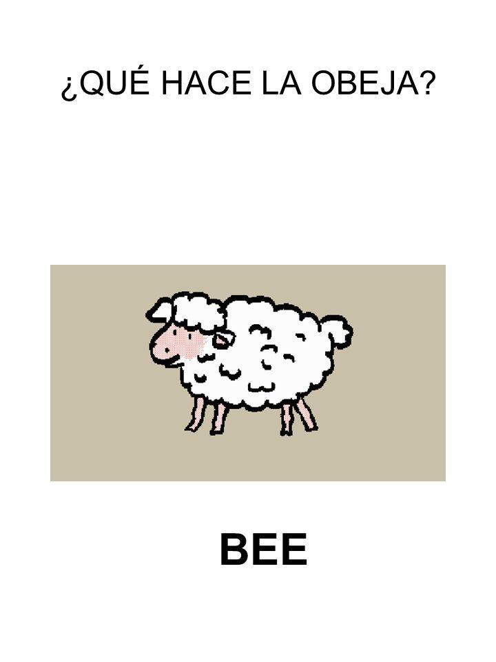 ¿QUÉ HACE LA OBEJA BEE