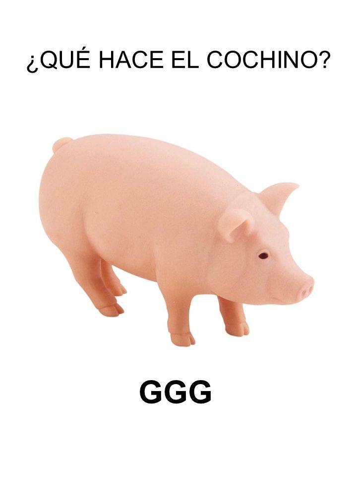 ¿QUÉ HACE EL COCHINO GGG