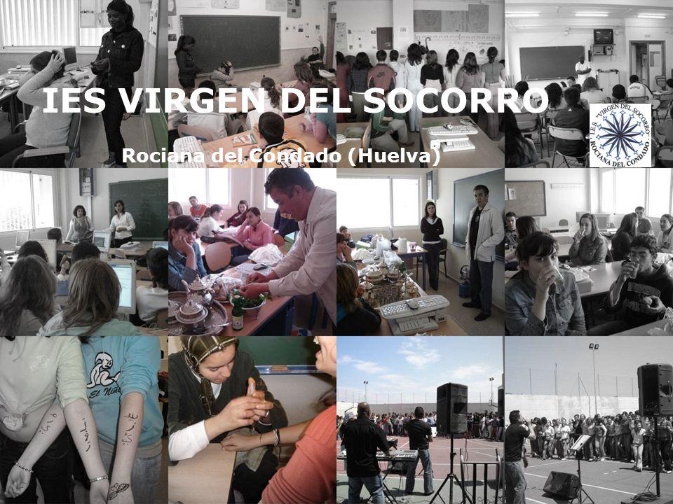 COMUNIDAD EDUCATIVA CENTRO EDUCATIVO (PROFESORADO) INSTITUCIONES AMPAS ALUMNOS/AS IES VIRGEN DEL SOCORRO