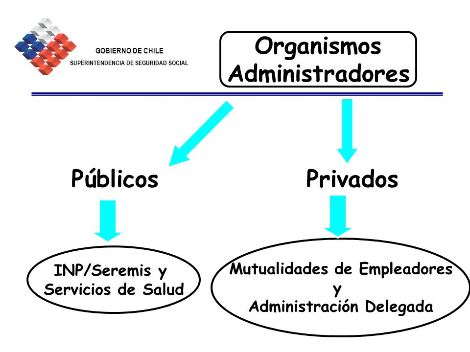 GOBIERNO DE CHILE SUPERINTENDENCIA DE SEGURIDAD SOCIAL 7 Organismos Administradores PúblicosPrivados INP/Seremis y Servicios de Salud Mutualidades de