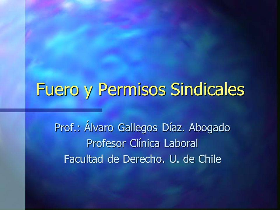 Fuero y Permisos Sindicales Prof.: Álvaro Gallegos Díaz. Abogado Profesor Clínica Laboral Facultad de Derecho. U. de Chile