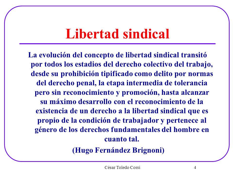 Libertad sindical La evolución del concepto de libertad sindical transitó por todos los estadios del derecho colectivo del trabajo, desde su prohibici