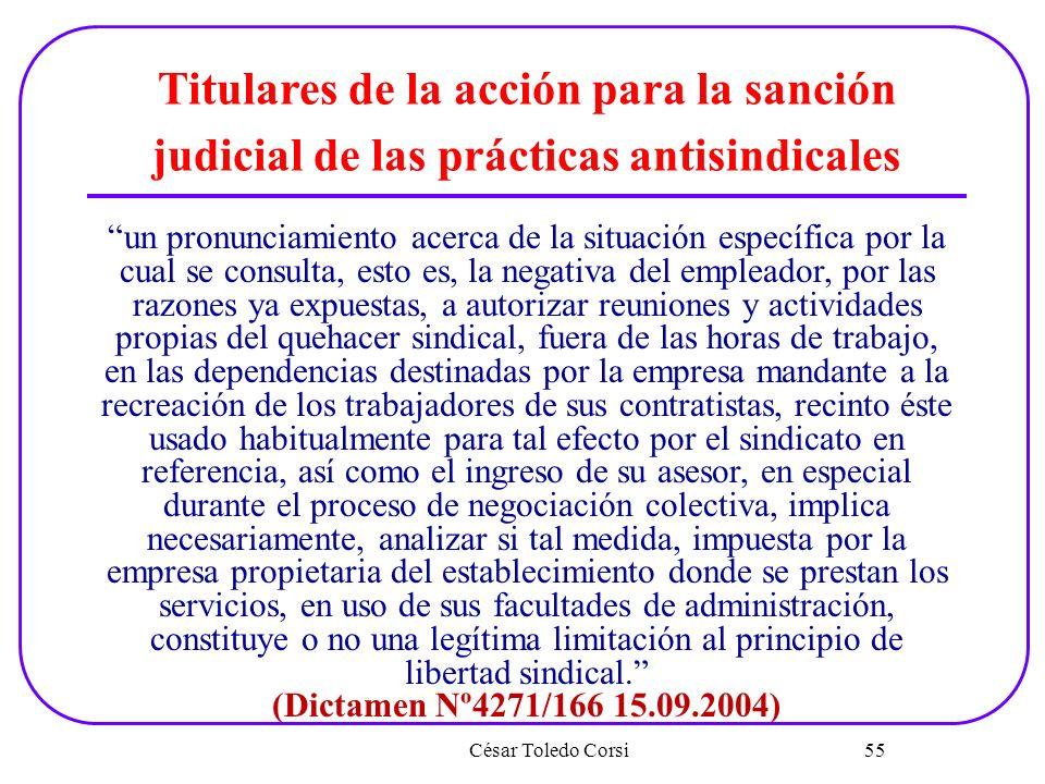 César Toledo Corsi 55 Titulares de la acción para la sanción judicial de las prácticas antisindicales un pronunciamiento acerca de la situación especí