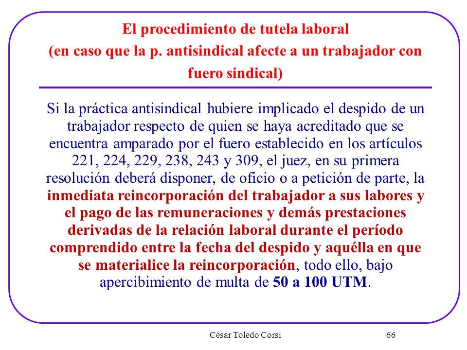 César Toledo Corsi 66 El procedimiento de tutela laboral (en caso que la p. antisindical afecte a un trabajador con fuero sindical) Si la práctica ant